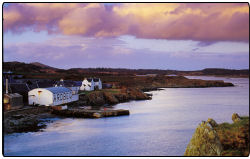 The beautiful veiw around the Ardbeg Distillery