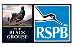 The Black Grouse and RSPB