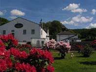 Glengoyne Distillery celebrates a summer of success - Press release date  28th September, 2009