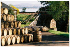 A view of all the barrels stored outside of the Glenmorangie Distillery