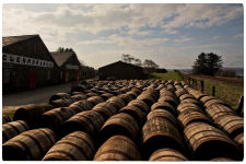 A view of all the barrels outside of the Glenmorangie Distillery