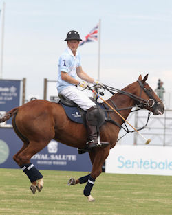 Prince Harry at the Sentebale Royal Salute Polo Cup Brazil 2012
