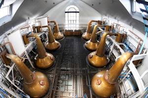Photo of the stills at Tormore Distillery